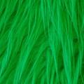11340 dunkelgrün