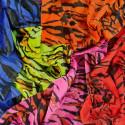 12062 Bunter Tiger